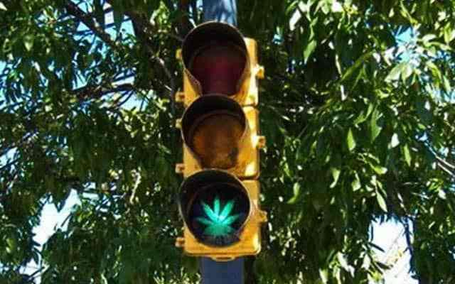 Never Get Busted Marijuana